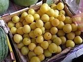 金門 2009:水果