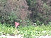 金門 2009:地雷區