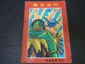 丸子+Allen 陳勳輝的收藏品:DSCN9734.JPG