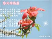 動女孩:春天的花蕊0.jpg