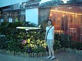 2008韓國首爾雪嶽山遊:DSC06468.jpg