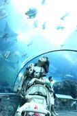 9/18海洋世界~夏都~員工旅遊:1434914246.jpg