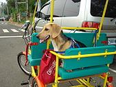 新竹海岸線&吃道地美食:這台是我跟老公騎的