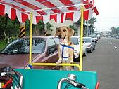 新竹海岸線&吃道地美食:所以我們只好租這種可以戴狗的