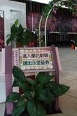 台南.高雄三日遊 (一):IMG_7499.jpg