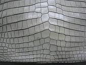 BOTTEGA VENETA包包清洗整染前後:60萬的BV鱷魚包(後)