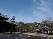 日本賞櫻之倉敷觀龍寺:日本828之旅 049.