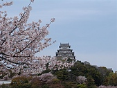 日本賞櫻第二天(0412國寶姬路城):日本828之旅 089.