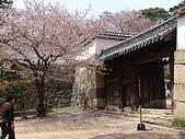 日本賞櫻第二天(0412國寶姬路城):日本828之旅 100.