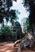 吳哥窟之旅(2005.09.21):森林深處的宮殿
