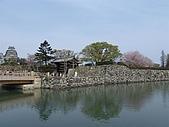 日本賞櫻第二天(0412國寶姬路城):日本828之旅 103.