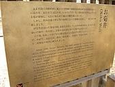 日本賞櫻第二天(0412國寶姬路城):日本賞櫻之旅 29