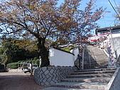 日本賞櫻之倉敷觀龍寺:日本828之旅 035.jpg