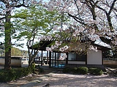 日本賞櫻之倉敷觀龍寺:日本828之旅 042.