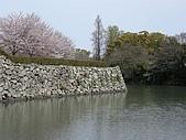 日本賞櫻第二天(0412國寶姬路城):日本賞櫻之旅 31