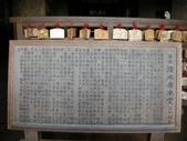 日本賞櫻第三天:日本賞櫻之旅 36