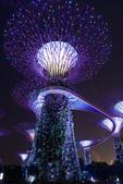 新加坡夜景:新加坡夜景_008.jpg