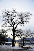 中禪寺湖:2015-01-25_018.jpg