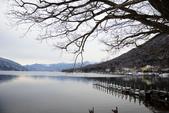 中禪寺湖:2015-01-25_007.jpg
