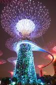 新加坡夜景:新加坡夜景_011.jpg