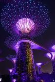 新加坡夜景:新加坡夜景_007.jpg
