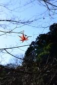 西山の里 桃源:2015-01-18_012.jpg
