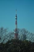 日本東京都五日遊:日本東京_0010.jpg
