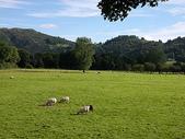 關於英國:來到湖區  喜歡這種大開闊的恬靜