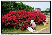080607 京成玫瑰園:DSC_2860.jpg