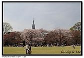 080405 新宿御苑 櫻花樹下野餐:DSC_1864.jpg