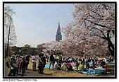 080405 新宿御苑 櫻花樹下野餐:DSC_1869.jpg