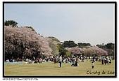 080405 新宿御苑 櫻花樹下野餐:DSC_1874.jpg