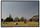 080405 新宿御苑 櫻花樹下野餐:DSC_1877.jpg