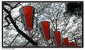080327 上野恩賜公園 櫻花直擊:CIMG6092.jpg