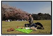 080405 新宿御苑 櫻花樹下野餐:DSC_1884.jpg