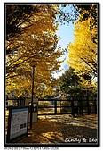 071209 新宿御苑、自由之丘、東京鐵塔:DSC_0042.jpg