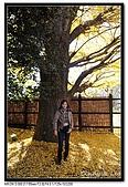 071209 新宿御苑、自由之丘、東京鐵塔:DSC_0043.jpg