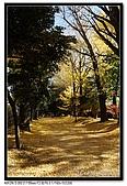 071209 新宿御苑、自由之丘、東京鐵塔:DSC_0046.jpg