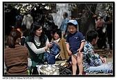 080405 新宿御苑 櫻花樹下野餐:DSC_1891.jpg