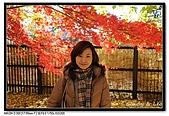 071209 新宿御苑、自由之丘、東京鐵塔:DSC_0049.jpg