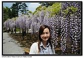080429 埼玉 牛島の藤:DSC_2166.jpg