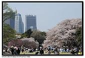 080405 新宿御苑 櫻花樹下野餐:DSC_1897.jpg