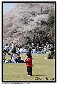080405 新宿御苑 櫻花樹下野餐:DSC_1906.jpg