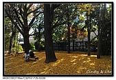 071209 新宿御苑、自由之丘、東京鐵塔:DSC_0055.jpg