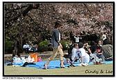 080405 新宿御苑 櫻花樹下野餐:DSC_1927.jpg