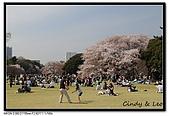 080405 新宿御苑 櫻花樹下野餐:DSC_1943.jpg