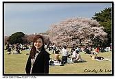 080405 新宿御苑 櫻花樹下野餐:DSC_1944.jpg