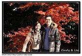 071209 新宿御苑、自由之丘、東京鐵塔:DSC_0071.jpg