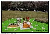 080405 新宿御苑 櫻花樹下野餐:DSC_1880.jpg