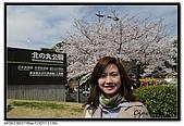 080329 東京櫻花盛開了:DSC_1509.jpg